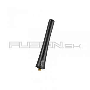 [Obr.: 39/58/41-autoantena-foliatec-fact-antenna-dot-black.jpg]