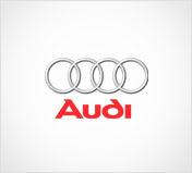 Audi - Vossen