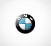 BMW - Vossen
